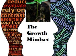 The GrowthMindset-image1